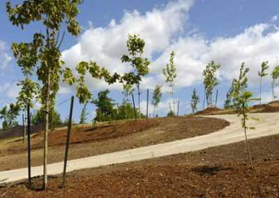 environmental restoration, markham