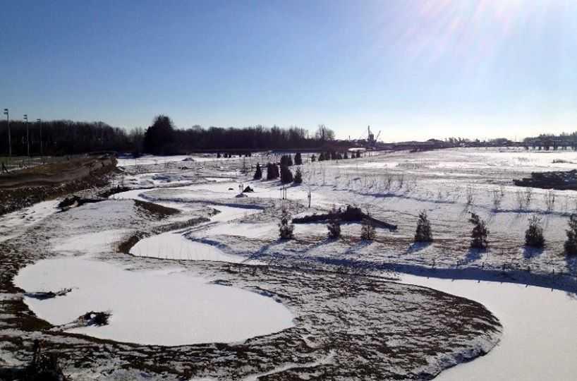 Silver linings of an unforgiving winter