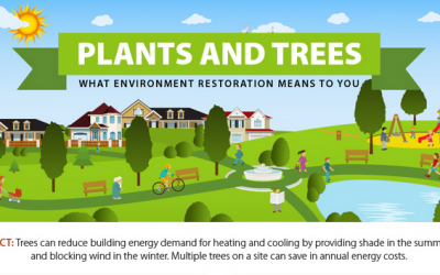 Infographic: benefits of plants and trees