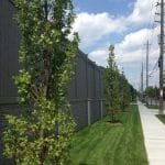 Streetscaping Vaughan