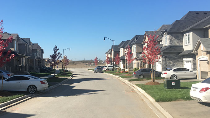 Sustainable Subdivision Landscape Development/Streetscaping