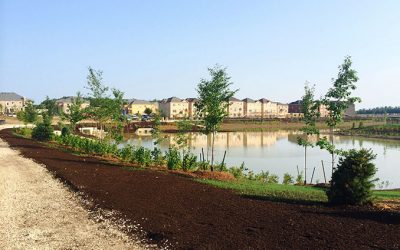 Stormwater Management Pond – Lemon or Lemonade?